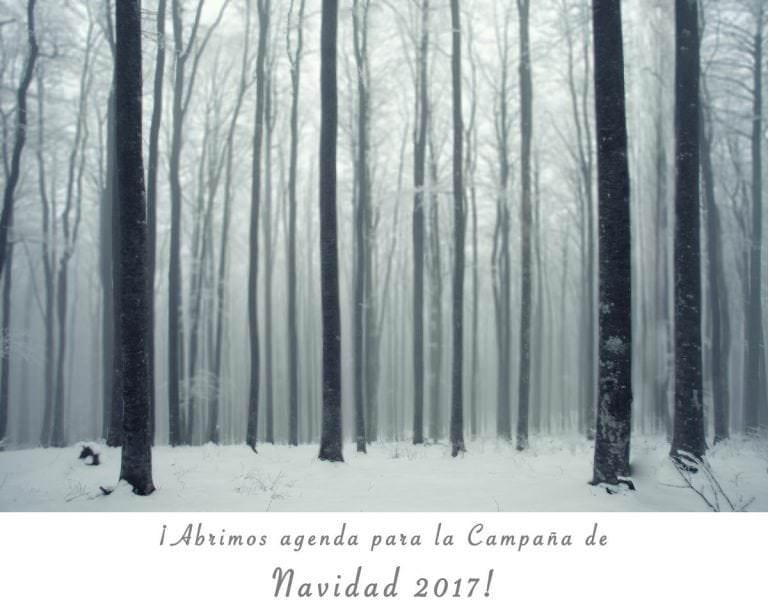 Campaña de Navidad 2017